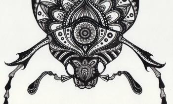 Beetleface 1 - original drawing 15x20 cm