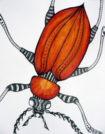 Cardinal Beetle original drawing 15x 20cm SOLD