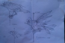 plans for the cally bird