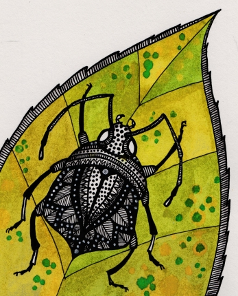 beetle thing